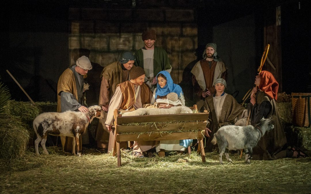 The Rest of the Christmas Story