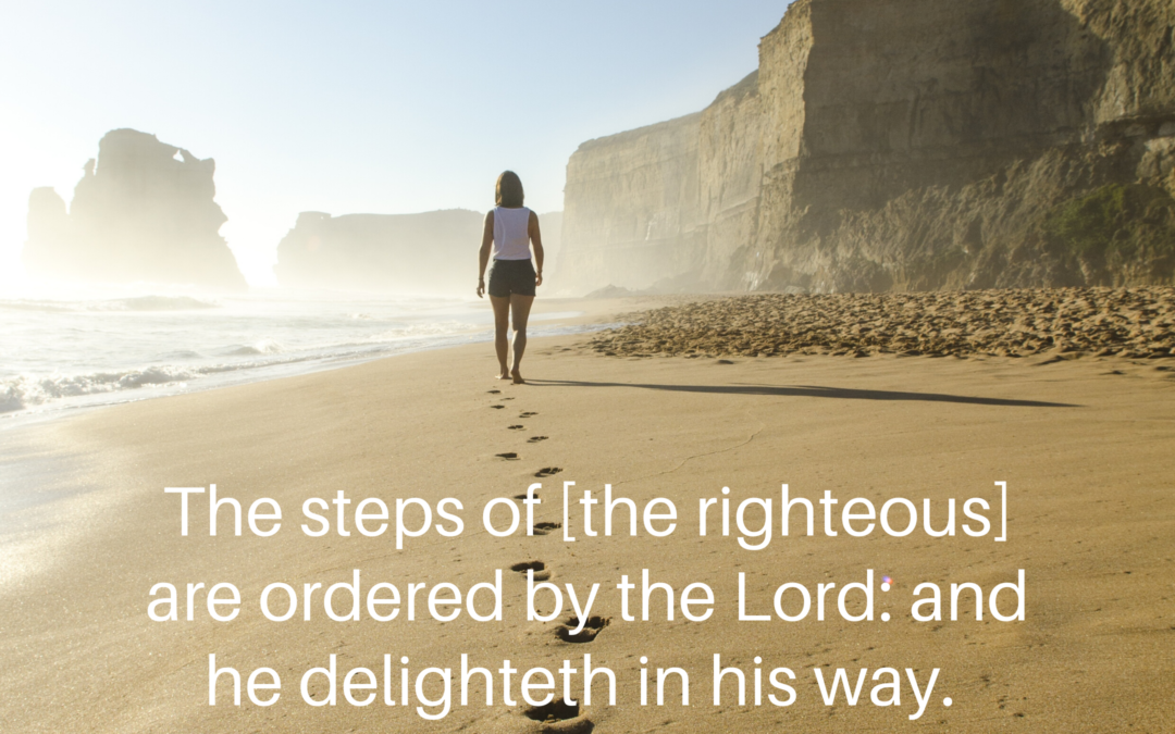 Who Orders Your Steps?