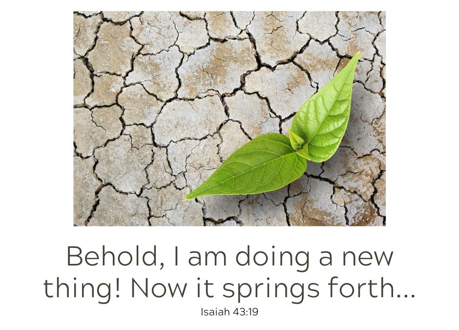 God is Doing Something New